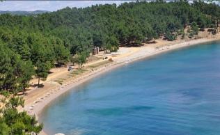 Gökçtepe Tabiat Parkı Plajı
