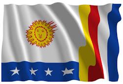 Bandera del Estado Vargas
