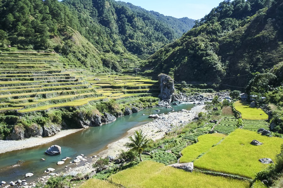 Rice Terraces in Northern Luzon