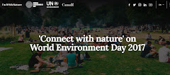 World Environment Day 2017 - UN's Websie