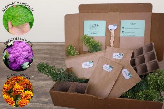 Flores en tu ensalada | Cartón Cartón | Encaja | Hommum