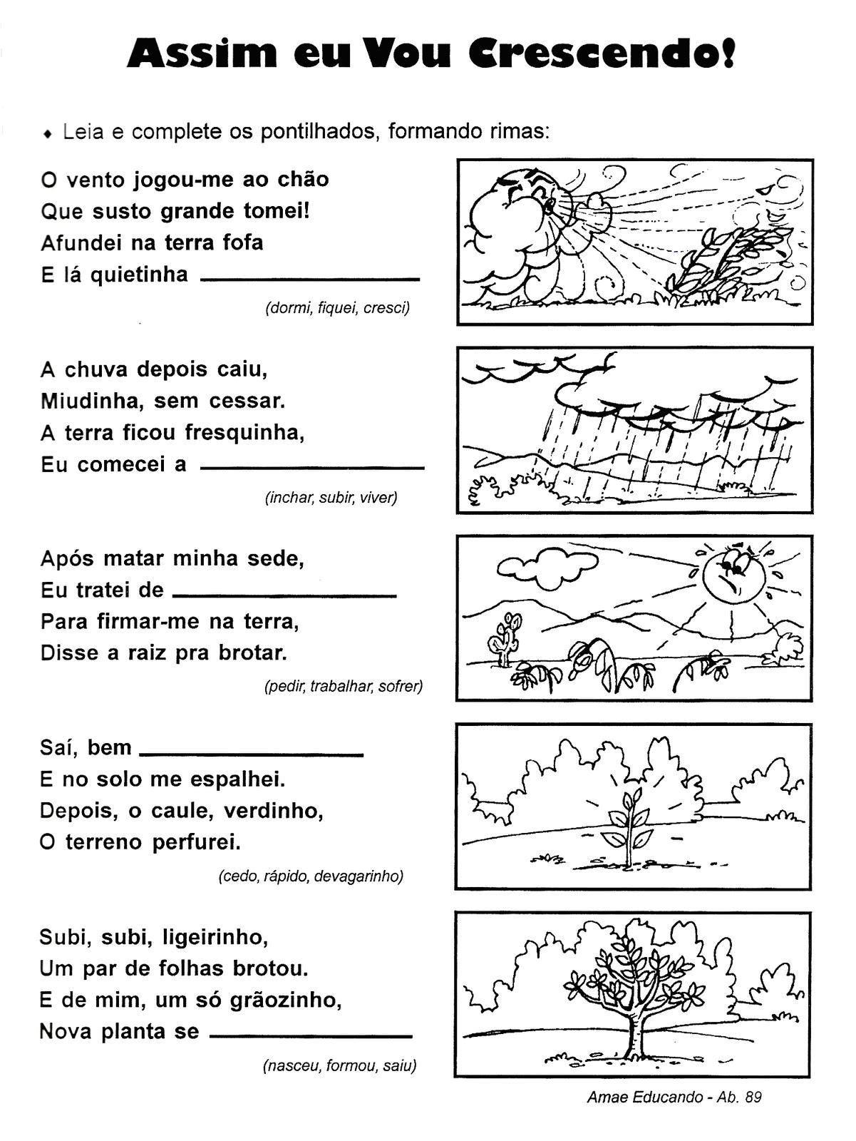 Atividade Horta Pomar E Jardim Na Educacao Infantil