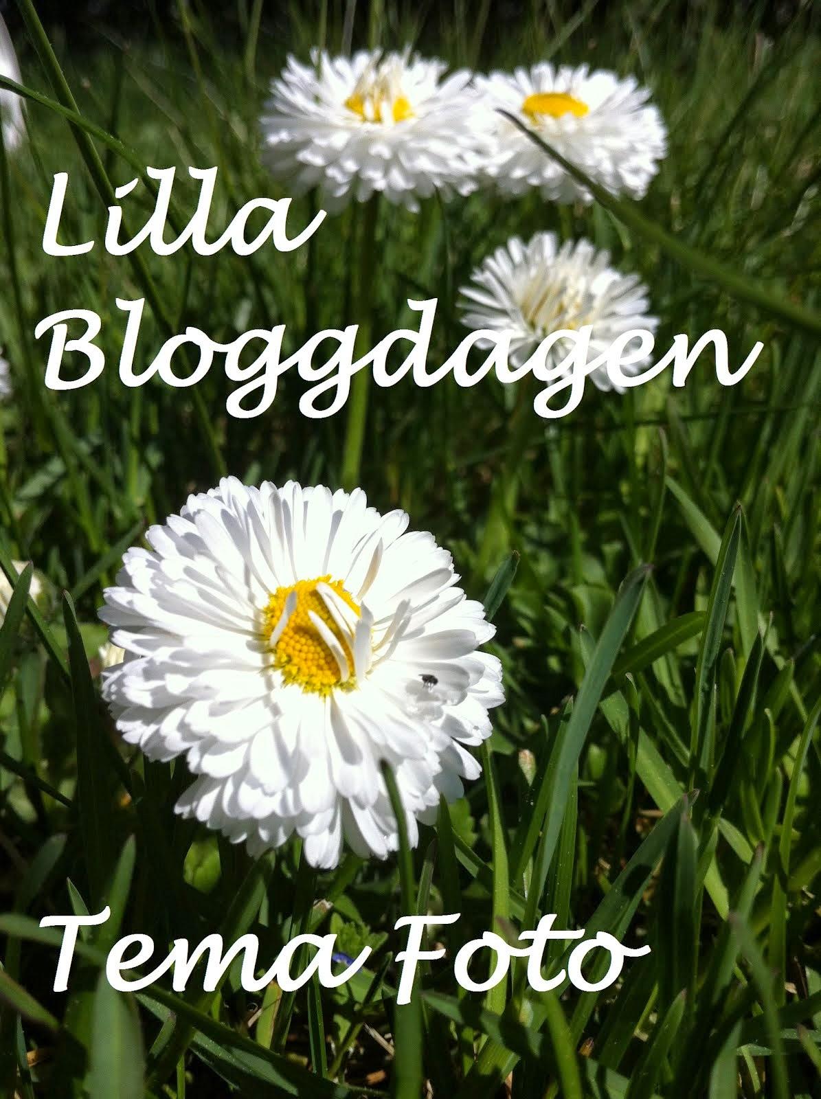 Bloggdagen