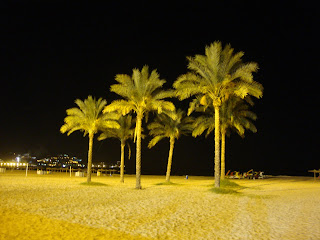 Palm Trees at night photo - Sant Antoni Beach - Cullera - Valencia