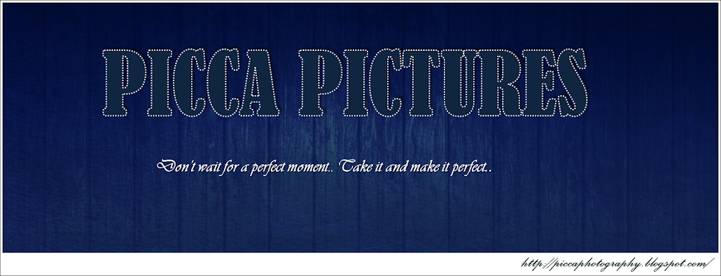 Picca Pictures...