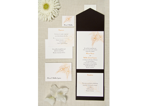 The Purple Mermaid features the finest wedding invitation packes on the