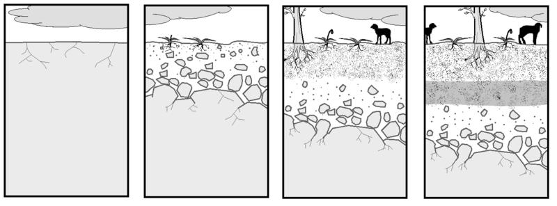 ambiente desarrollo y sociedad el suelo