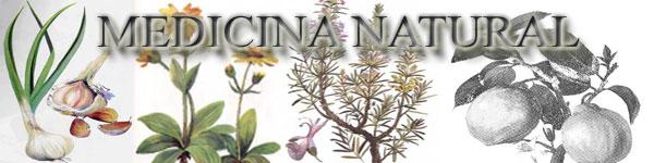 PLANTAS MEDICINALES - REMEDIOS CASEROS