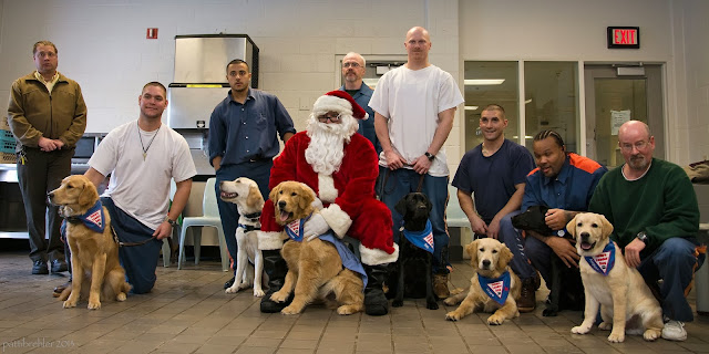 Eight men stand or crouch around Santa Claus, who is sitting with a golden retriever. Six of the men have Future Leader Dog puppies, as well as Santa. Two more goldens, one golden/lab cross (yellow), one yellow lab and two black labs.