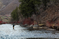 Fishing Provo River