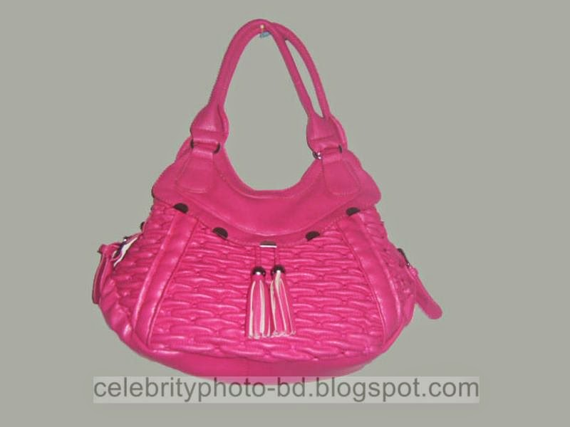 Latest+Fashionable+Vanity+Bag's+Photos+Collection+For+Modern+Generation+Girls+&+Ladies+2014 2015005