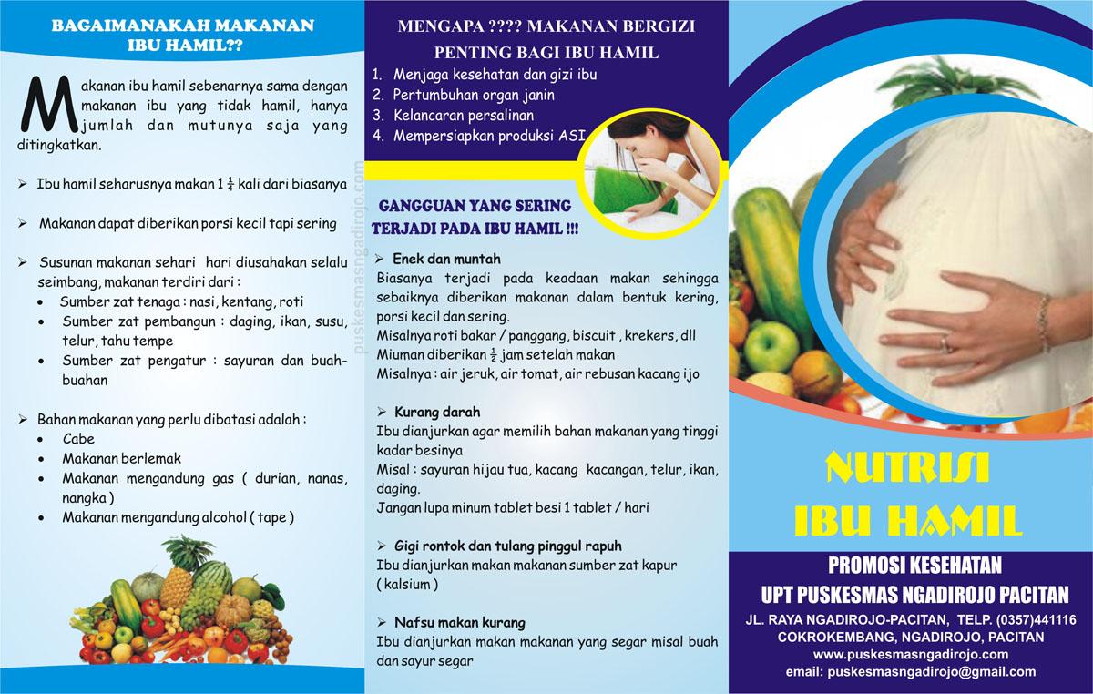 Gambar Nutrisi Ibu Hamil Brosur Nutrisi Ibu Hamil