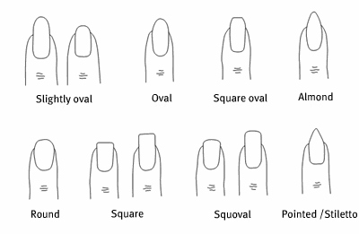 Of Your Hands The Length Fingers Shape Cuticle Area Hobbies And Work Here Are Some Examples Different Nail Shapes