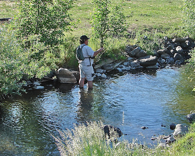 Finding arizona cool places in the rim country for Fishing spots in arizona