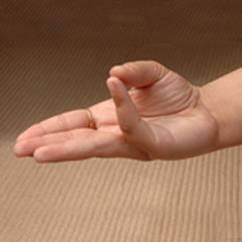 Los mudras para sanar con tus manos