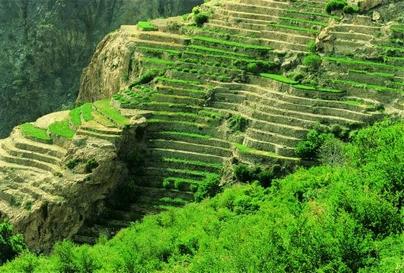 هل ترغب في السياحة في اليمن؟ تفضل هنا 13.jpg