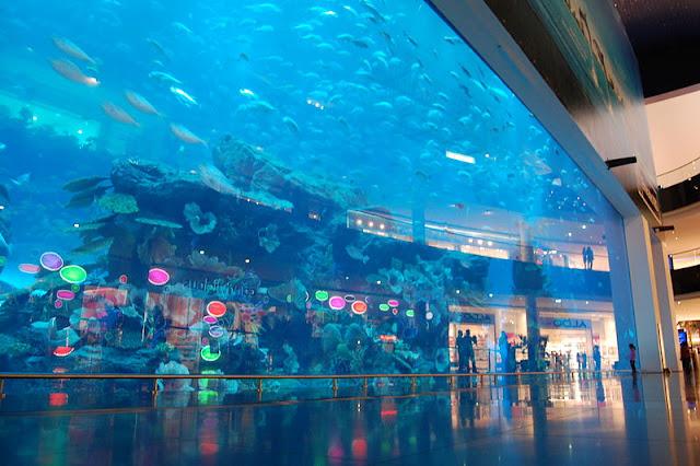 شاهد اكبر بالعالم Dubai-Aquarium-1.jpg