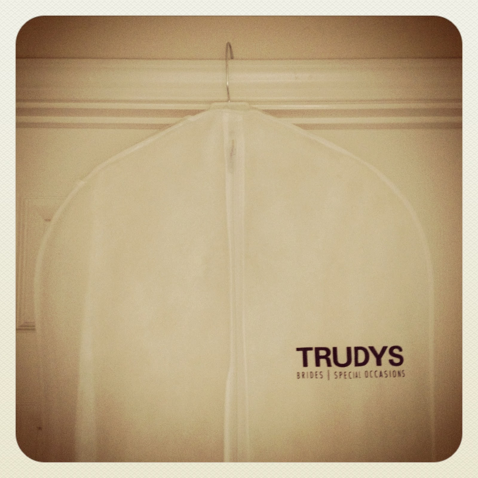 It's Because I Think Too Much - Trudy's Bridal Dress Bag