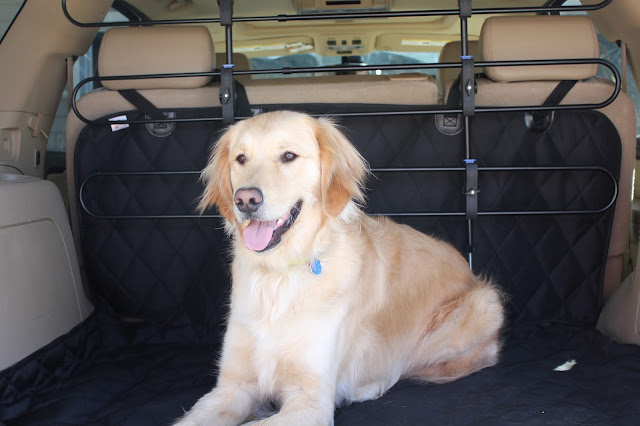 Solvit Car Barrier review Dog Safety, Travel Safely with pets,