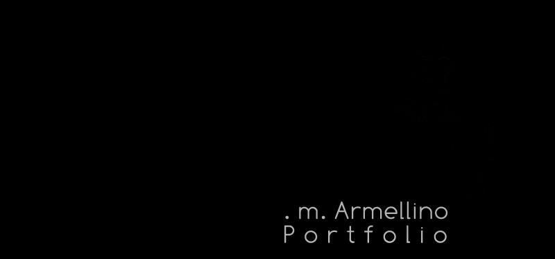 . m. Armellino - Portfolio 2015_2016
