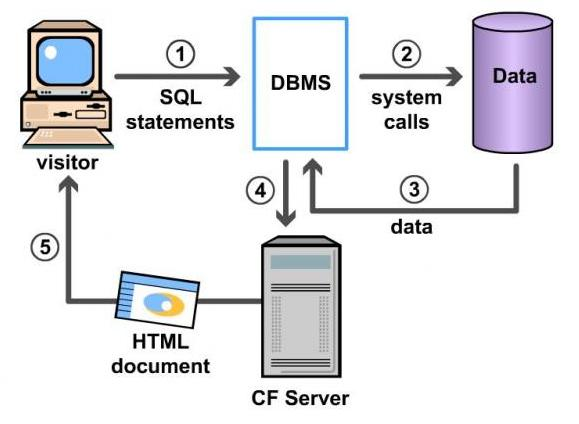 Mba Ocean Database Management System Dbms