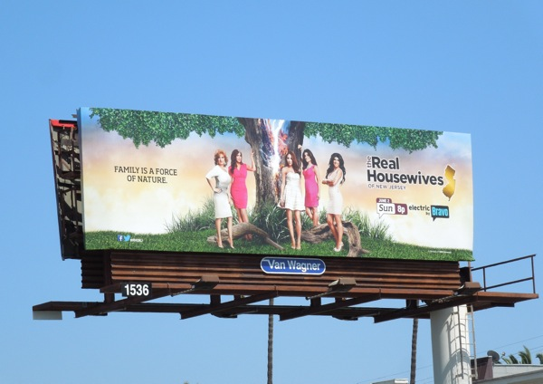 Real Housewives of New Jersey season 5 billboard