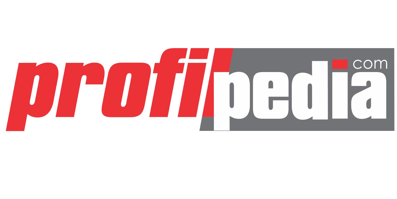 About ProfilPedia.com