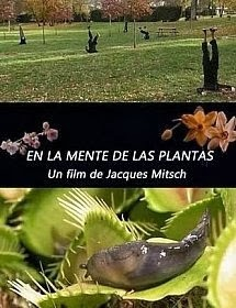 "Blog Safari Club, documental online, ""En la mente de las plantas"""