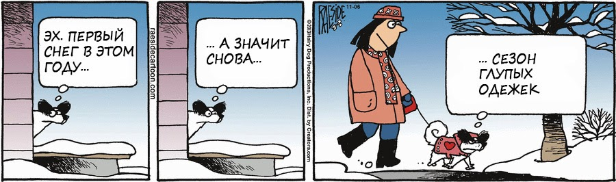 собака и первый снег, комикс, одежда для животных