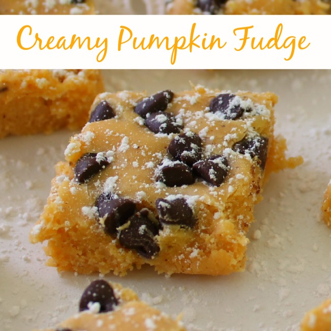 Creamy fudge with pumpkin and chocolate chips