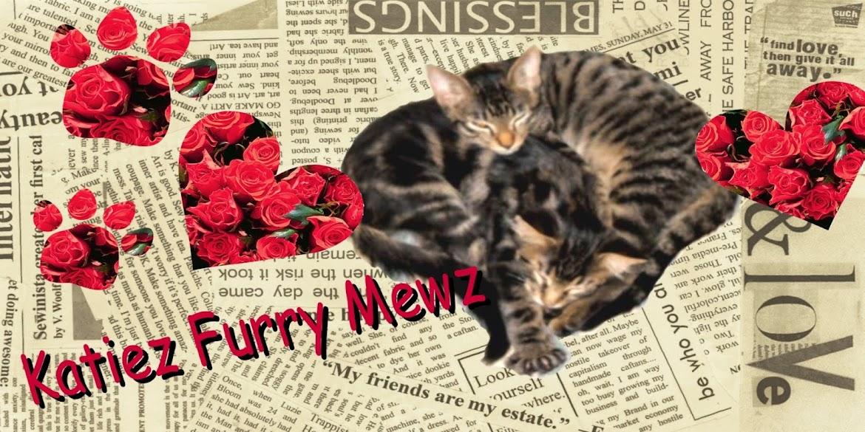 ***Katiez Furry Mewz 2016***
