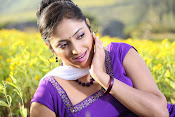 Hari priya photo shoot among yellow folwers-thumbnail-8