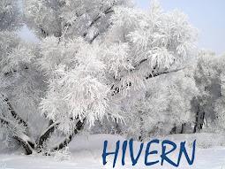 IMATGES D'HIVERN