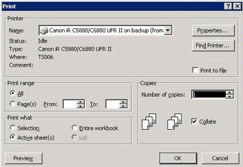 Excel 2003 Print Option