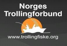 NTF Bloggen