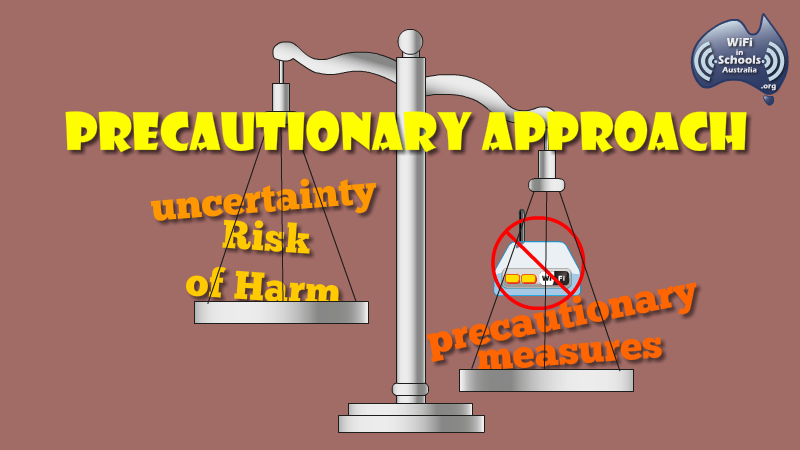 is the precautionary principle a sound approach to risk analysis Ante risk management approaches such as risk analysis and precaution the precautionary principle, recognizes the inherent uncertainties in and stakes in particular, if a sound and effective resilience system is in.