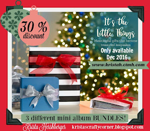 30% discount on MINI Album BUNDLES