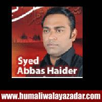 http://ishqehaider.blogspot.com/2013/10/syed-abbas-haider-nohay-2014.html