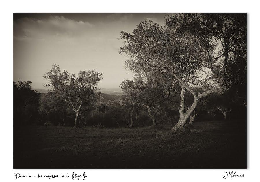 Sierra de Aracena...