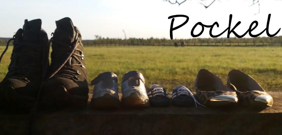 Pockel