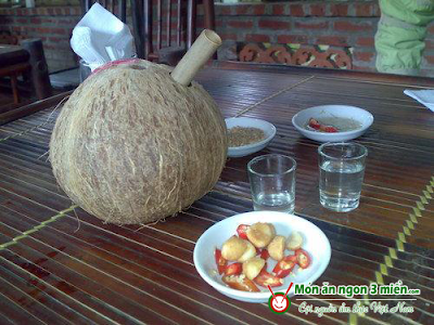 ruou dua ben tre (1) Rượu dừa Bến Tre