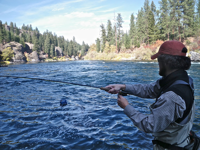 Chucking line and chasing tail a side benefit of fishing for Spokane river fishing