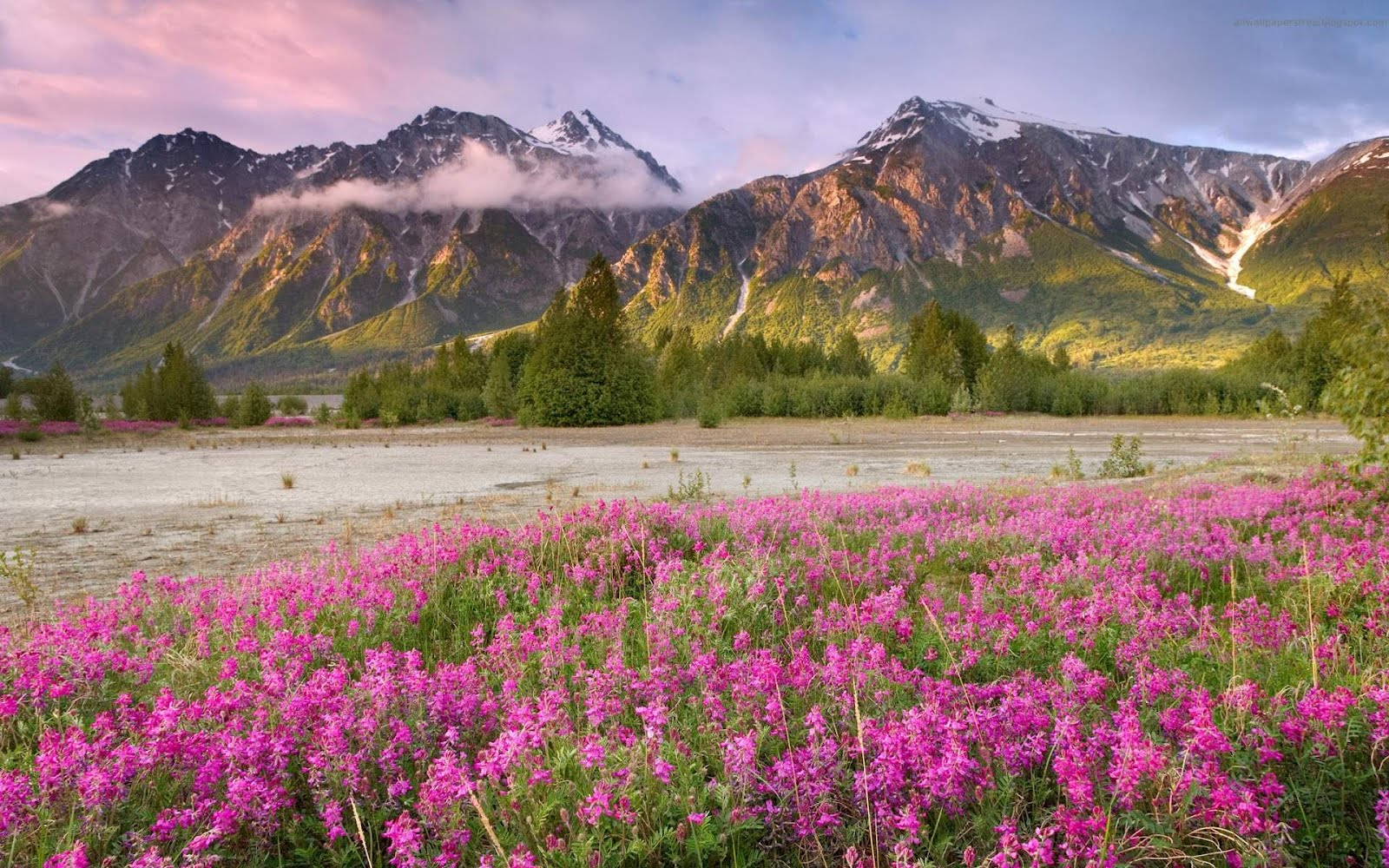 http://4.bp.blogspot.com/-HnZahD57X7E/TzfFecv9I5I/AAAAAAAAALA/Fsjz-3cyhnM/s1600/40-Beautiful-Canada-Landscapes-HD-Wallpapers-1.jpg