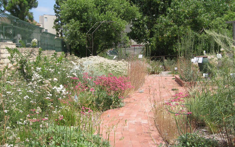 Mother Nature's Backyard - A Water-wise Garden: Designing Your 'New on garden center, permaculture design maps, garden plan maps,