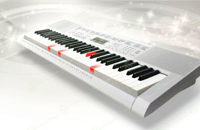 dan organ Casio LK 247