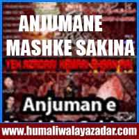 http://ishqehaider.blogspot.com/2013/11/anjuman-e-mashk-e-sakina-nohay-2014_5.html