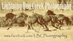 Lightning Bug Creek Photography