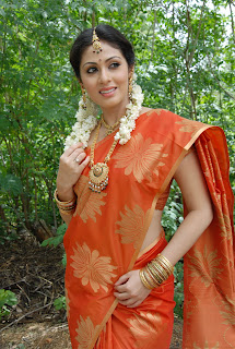 Sada wearing Spicy Transparent Half Orange Saree navel