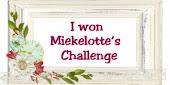 random winnaar challenge 6