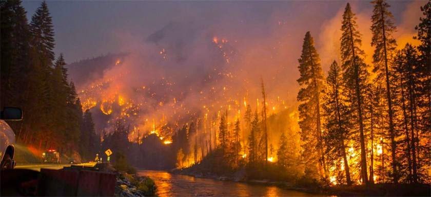 http://ecologywa.blogspot.co.uk/2015/04/greater-risk-of-wildfires-in-washington.html
